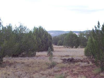 1805 W. Cumberland Parcel J Rd., Ash Fork, AZ 86320 Photo 8