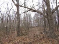 Home for sale: Tbd Etna Rd., La Fontaine, IN 46940