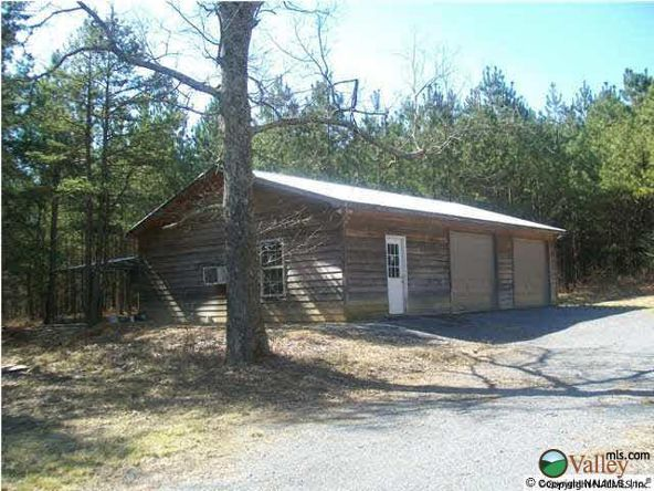 339 County Rd. 245, Fort Payne, AL 35967 Photo 1