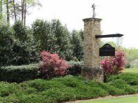 Home for sale: Lot 17 The Sanctuary, Blairsville, GA 30512