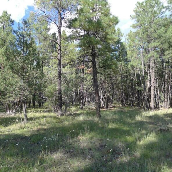 289 Goldmine Dr., Lakeside, AZ 85929 Photo 4