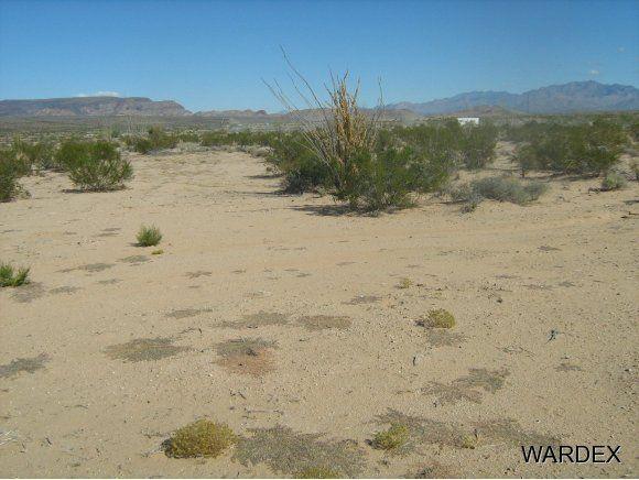 16235 S. Shep Ln. S, Yucca, AZ 86438 Photo 4
