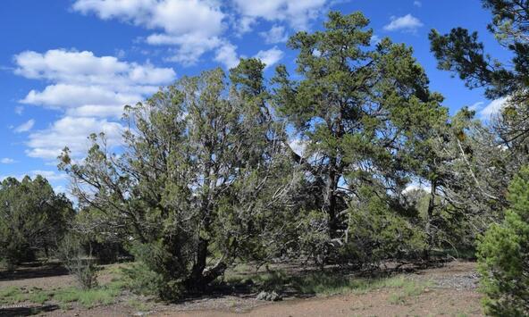 76+83+92 Shadow Rock Ranch, Seligman, AZ 86337 Photo 3