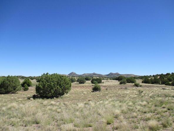 8451 W. Dillon Wash Rd., Prescott, AZ 86305 Photo 16