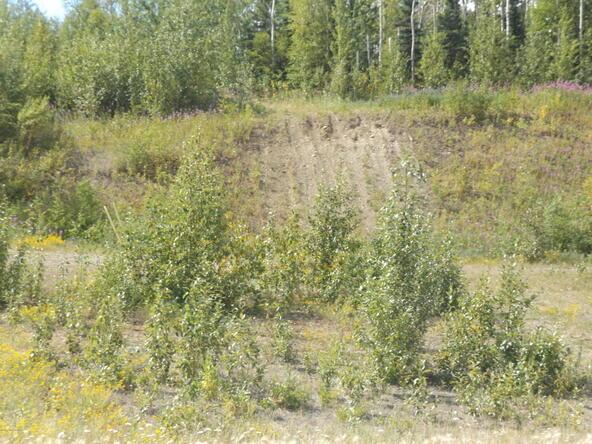 7917 E. Matanuska Spur Rd., Wasilla, AK 99645 Photo 20