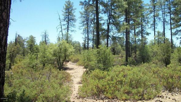 509 N. Chaparral Pines Dr., Payson, AZ 85541 Photo 22