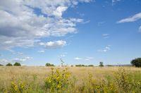 Home for sale: Meadow Creek Ln., Mount Carmel, UT 84755