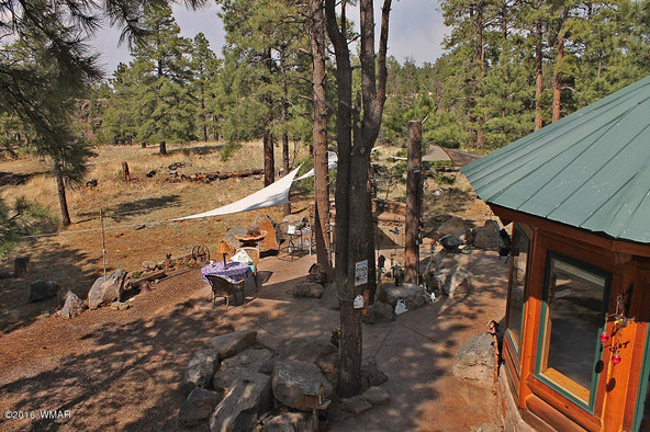 38721 State Route 373, Greer, AZ 85927 Photo 58