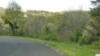 Home for sale: Lot 16 River Pointe, Kodak, TN 37764