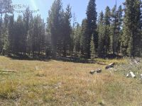 Home for sale: Forest Service Rd. 169, Red Feather Lakes, CO 80545
