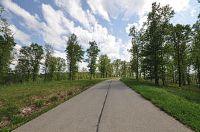 Home for sale: L7 Woods Ridge Dr., Highlandville, MO 65669