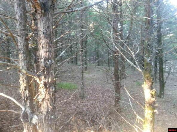 20824 Bud's. Ln., Lead Hill, AR 72644 Photo 5