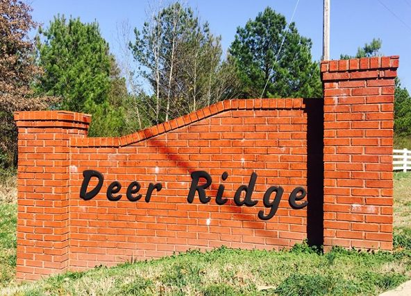 28 Deer Run Cr, Rogersville, AL 35652 Photo 4