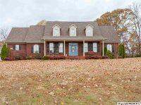 Home for sale: 298 J B Walker Rd., New Market, AL 35761