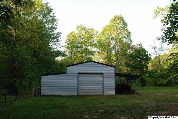 3733 County Rd. 608, Valley Head, AL 35989 Photo 30