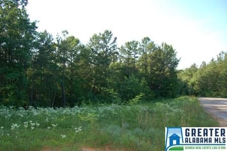 12 Rock Creek Co Rd. 4312, Wedowee, AL 36278 Photo 3