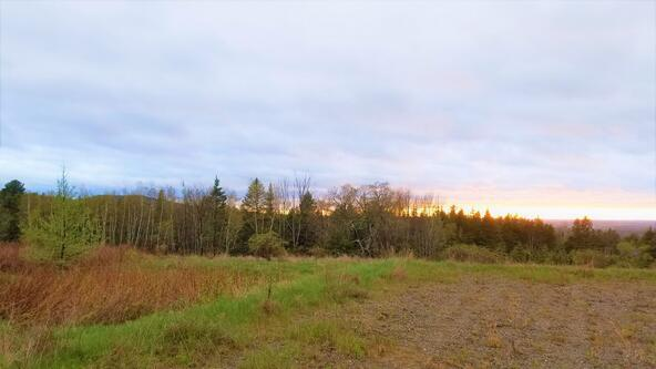 Lot 1-G Dole Hill Rd., Holden, ME 04429 Photo 7