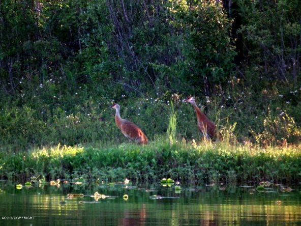 13752 W. Airigin Dr., Big Lake, AK 99652 Photo 19