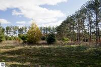 Home for sale: 0013 Lipp Farm Rd., Benzonia, MI 49616