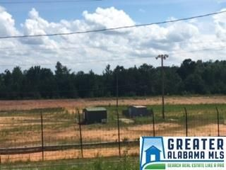 2450 Co Rd. 228, Clanton, AL 35045 Photo 2
