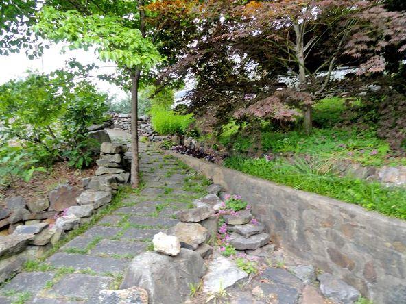 100 Long Island Dr., Hot Springs, AR 71913 Photo 6