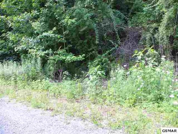Lot 24 Windswept View Way, Sevierville, TN 37862 Photo 2