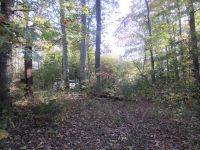 Home for sale: Lot 6 Taylor Ford Rd., Monroe, TN 38573