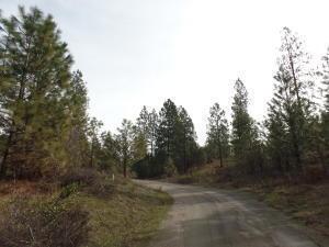 Lot 73 Sherman View Way, Kettle Falls, WA 99141 Photo 13
