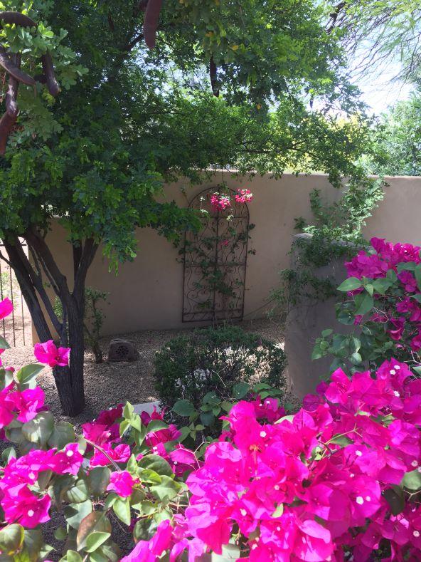 4138 E. McDonald Drive, Paradise Valley, AZ 85253 Photo 19