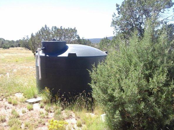 47683 N. Deadwood Rd., Seligman, AZ 86337 Photo 8