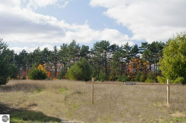 0012 Lipp Farm Rd., Benzonia, MI 49616 Photo 4