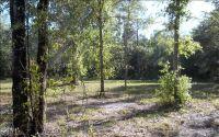 Home for sale: 371 Primrose Terrace, Fort White, FL 32038