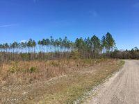Home for sale: 33089 Tupelo Ln., Callahan, FL 32011
