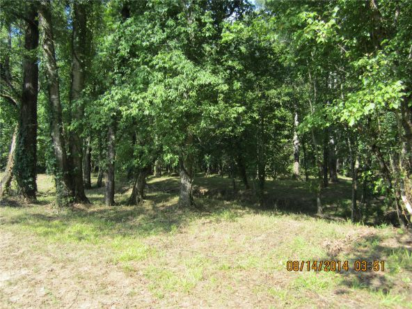 1865 County Rd. 99, Gaylesville, AL 35973 Photo 13