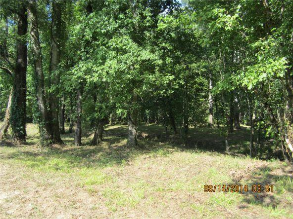 1865 County Rd. 99, Gaylesville, AL 35973 Photo 33