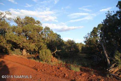 957 Westwood Ranch, Seligman, AZ 86337 Photo 14