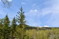 Home for sale: 230 Game Trail Rd., Silverthorne, CO 80498