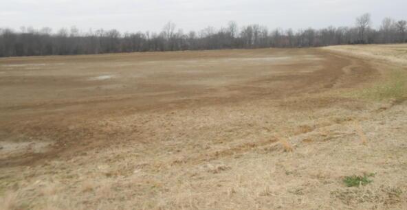 402.93 Acres Long Creek, Waldenburg, AR 72475 Photo 7