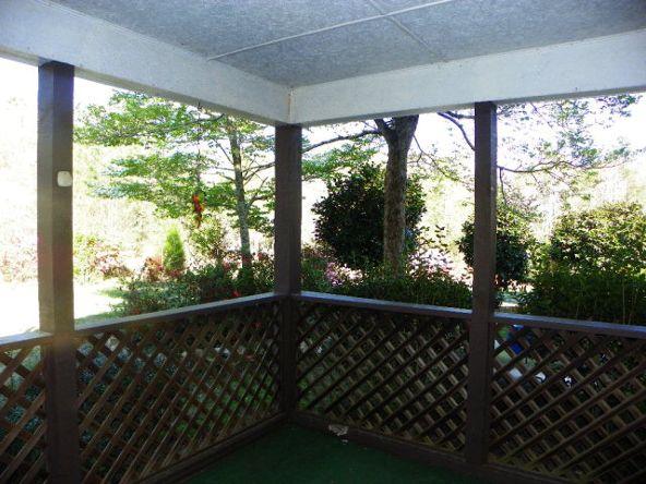 3045 Lee Rd. 250, Salem, AL 36874 Photo 18