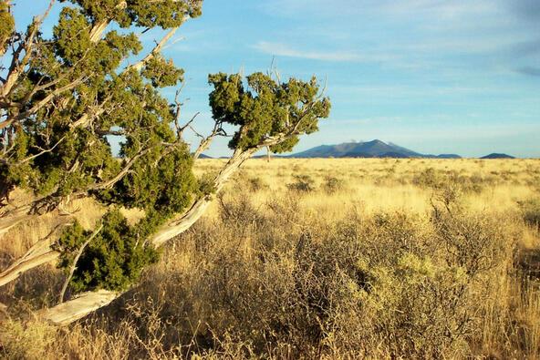 6218 S. Prairie Grass Ln., Williams, AZ 86046 Photo 15