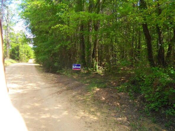 1201 Coon Hop Rd., Hardaway, AL 36038 Photo 29