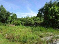 Home for sale: Rachel Ln., Hokes Bluff, AL 35903