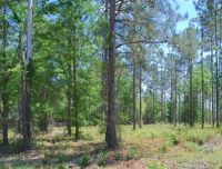 Home for sale: Lot 10 Watermark, Hortense, GA 31543