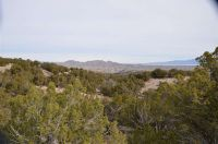 Home for sale: 40 Wild Mountain Rd., Madrid, NM 87010