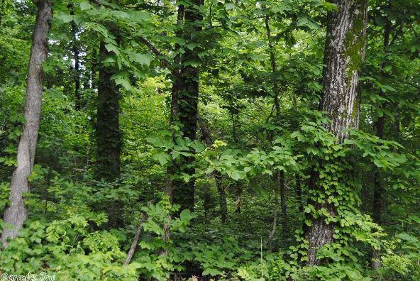1244 Kimbrell Creek Rd., Marshall, AR 72650 Photo 21