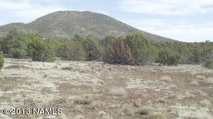 10705 N. Falcon Ridge, Williams, AZ 86046 Photo 3