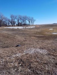 Home for sale: Hwy. 7, Newell, IA 50588