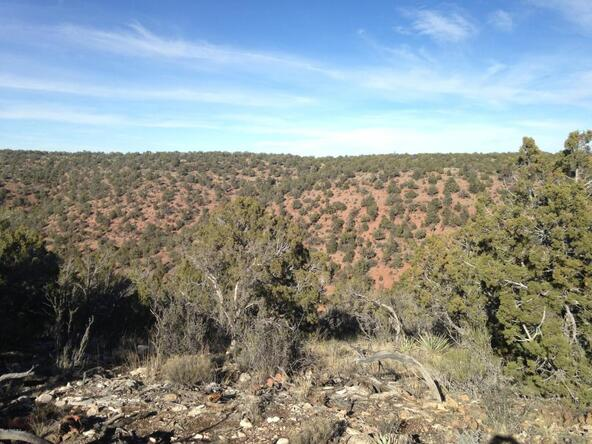 440 E. Arizona, Ash Fork, AZ 86320 Photo 10