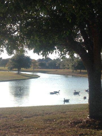 33 Olde Park Rd., Gulf Shores, AL 36542 Photo 7