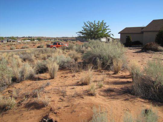 563 Pinto Rd., Page, AZ 86040 Photo 2